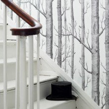 Cole & Son New Contemporary Two Wallpaper Collection